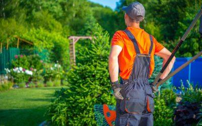 Household Employee in St Petersburg Florida