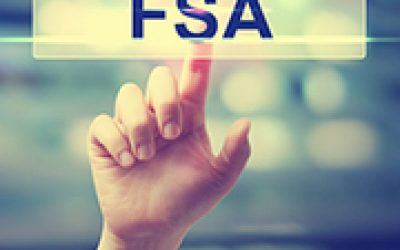FSAs in St Petersburg Florida