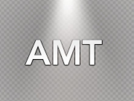 AMT Calculations in St Petersburg Florida